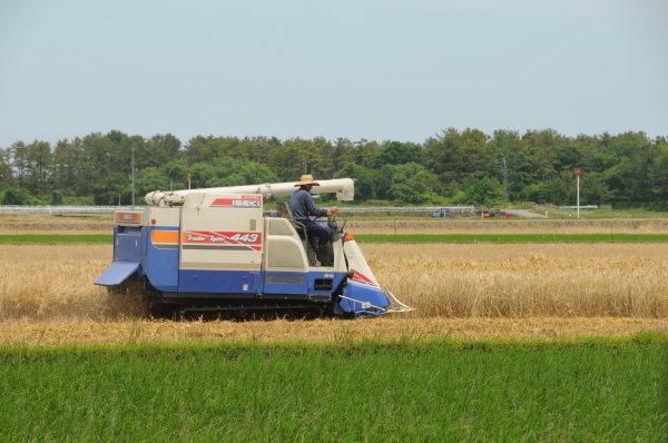 麦刈り用コンバイン