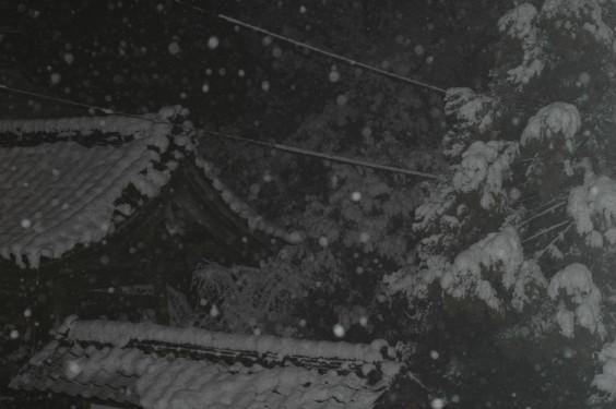雪 0001.jpg